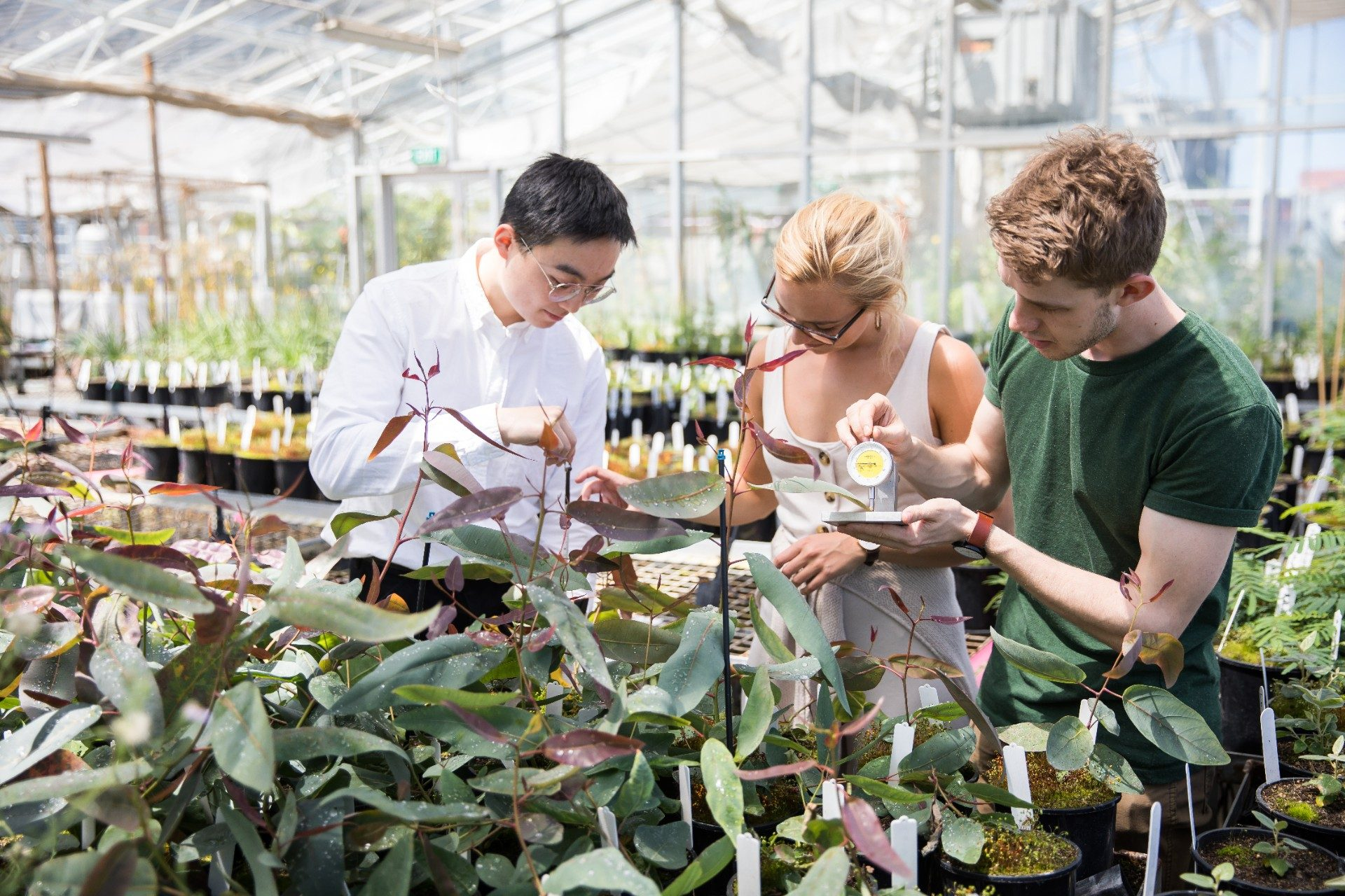 Photograph of science students in a garden centre